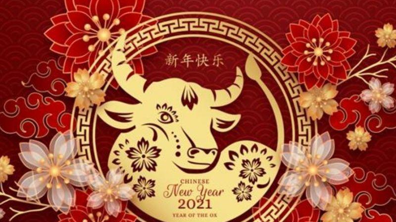 Çin 2021 Öküz Yılı Nedir ve Ne Zaman?