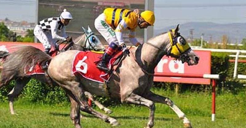 TJK canlı 10 Mart at yarışı sonuçları! 10 Mart 2021 altılı sonuçları