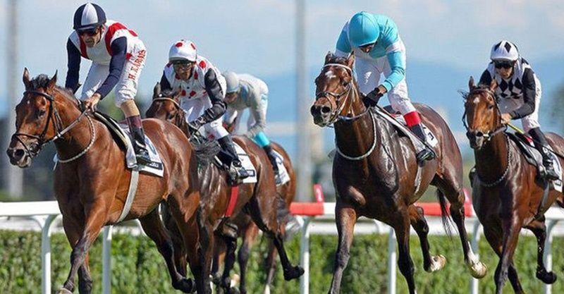 TJK canlı 17 Mart 2021 İstanbul Bursa at yarışı sonuçları! 17 Mart altılı sonuçları