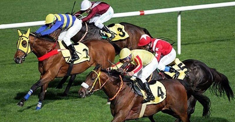 TJK canlı 18 Mart Şanlıurfa İzmir at yarışı sonuçları! 18 Mart altılı sonuçları