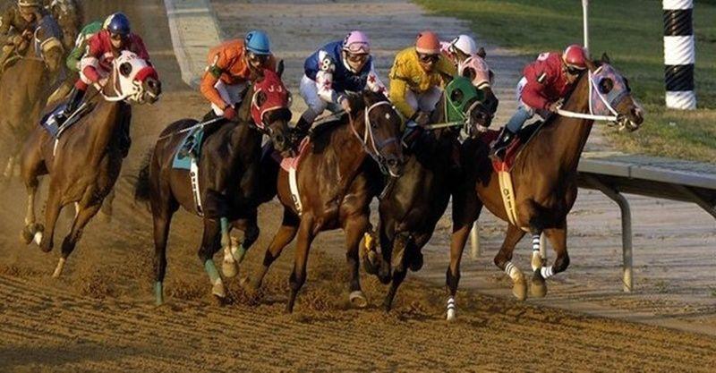 TJK canlı 19 Mart 2021 İzmir Kocaeli at yarışı sonuçları! 19 Mart altılı sonuçları