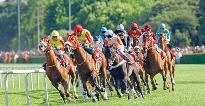 TJK canlı 8 Nisan 2021 İzmir Şanlıurfa at yarışı sonuçları! 8 Nisan Perşembe altılı ganyan sonuçları