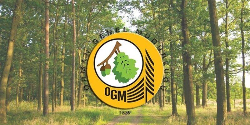 Orman Genel Müdürlüğü işçi alımı başvuruları başladı mı? Orman Genel Müdürlüğü işçi alımı başvuru şartları neler?