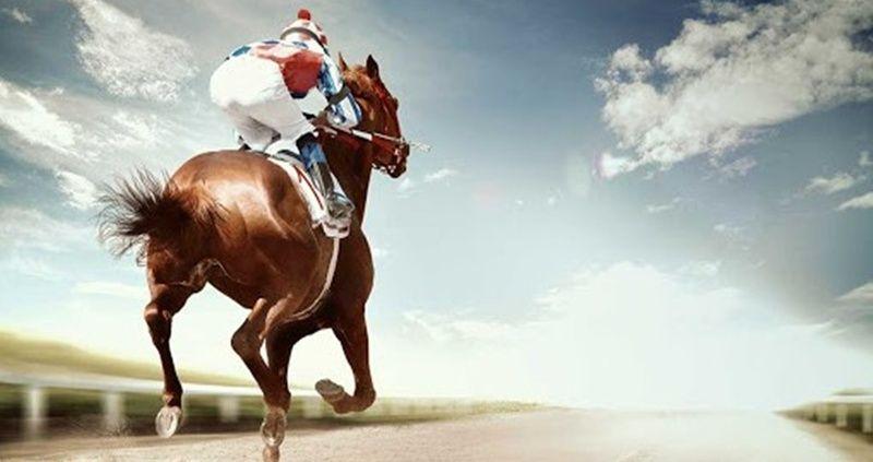 8 Haziran 2021 Adana Ankara at yarışı tahminleri! 8 Haziran banko altılı tahminleri at yarışı yorumları
