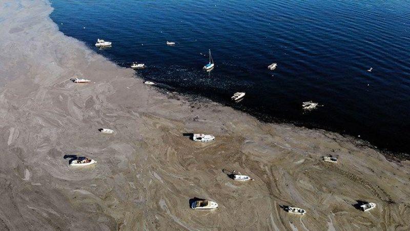 Marmara denizinde yüzmek cilt hastalıklarına davetiye çıkarıyor