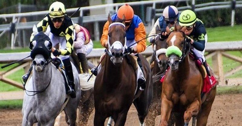 13 Haziran 2021 Ankara İzmir at yarışı tahminleri ve at yarışı yorumları! 13 Haziran Pazar banko altılı tahminleri