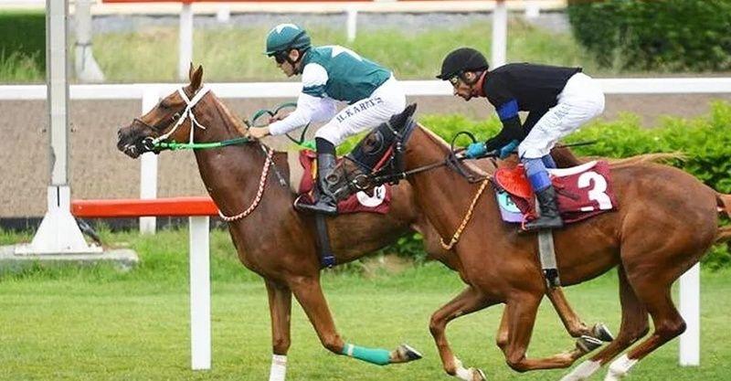 16 Haziran 2021 Elazığ İstanbul at yarışı tahminleri! 16 Haziran banko altılı tahminleri