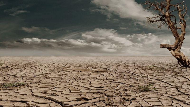 İklim krizde: Her yıl 12 milyon hektar arazi yok oluyor