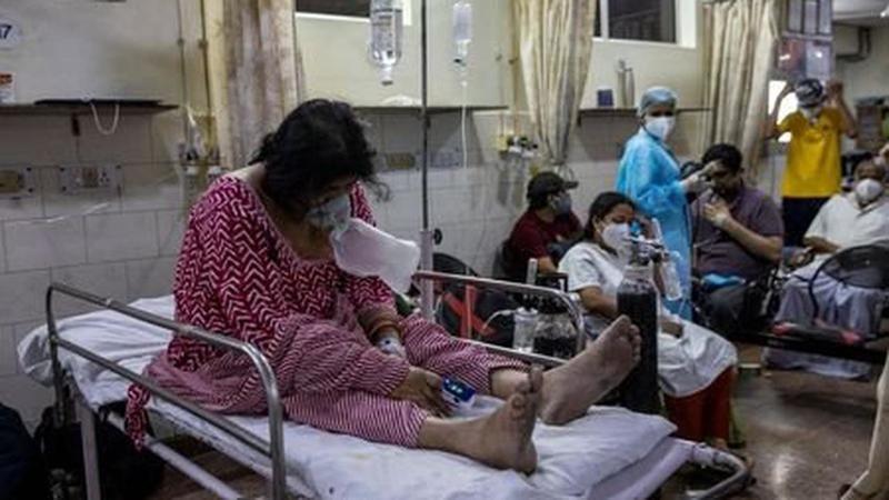 Hindistan'da ölümcül Nipah virüsücan alıyor