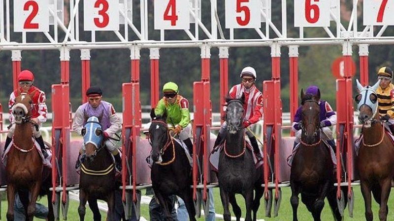 TJK 7 Temmuz 2021 İstanbul at yarışı tahminleri ve yorumları! 7 Temmuz 2021 altılı tahminleri