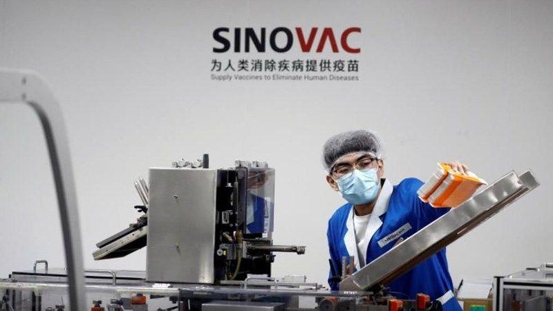 Sinovac'ın Türkiye'deki Faz-3 ara sonucu: Yüzde 83,5 etkili