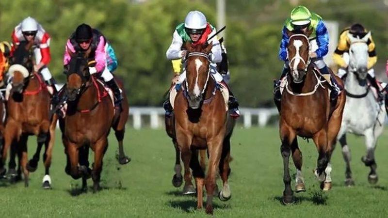 TJK canlı 11 Temmuz 2021 İstanbul at yarışı sonuçları! 11 Temmuz 2021 altılı sonuçları