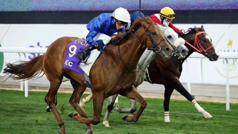 13 Temmuz 2021 Kocaeli Ankara at yarışı tahminleri! 13 Temmuz banko, bombacı, kuralsız altılı at yarışı tahminleri