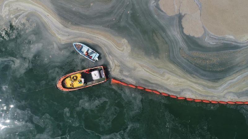 Müsilaj nedeniyle zarara uğrayan balıkçılara 4.2 milyon TL destek verildi
