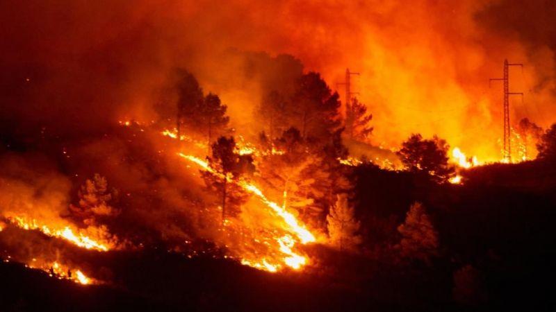 Orman yangınları yargıya taşındı, Bakan hakkında suç duyurusu