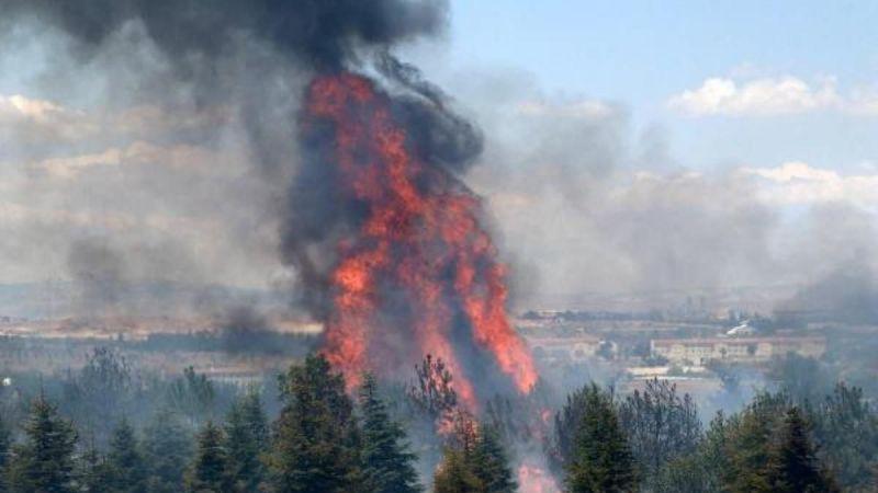 Atatürk Orman Çiftliği'nde yangın çıkartan şüpheli için istenen ceza belli oldu