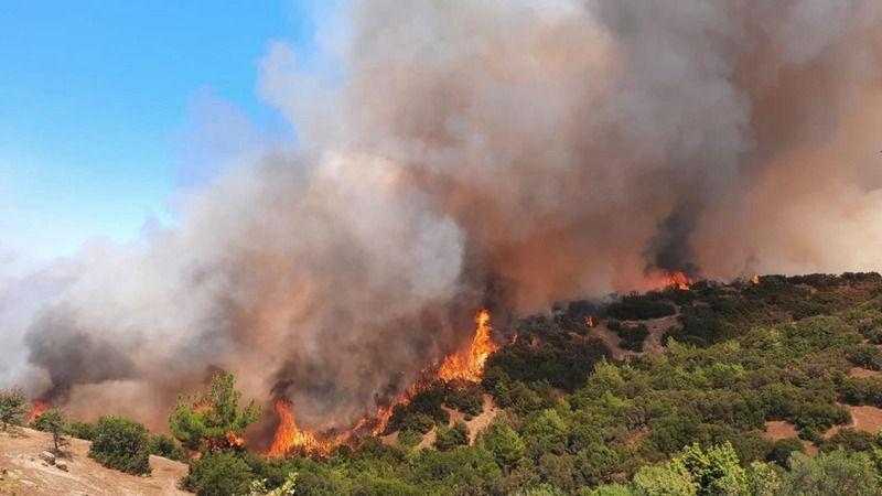 Kandilli Rasathanesi Meteoroloji Laboratuvarı Başkanı Adil Tek: Yangın bölgelerinde sıcaklık düşücek ama yağış gözükmüyor