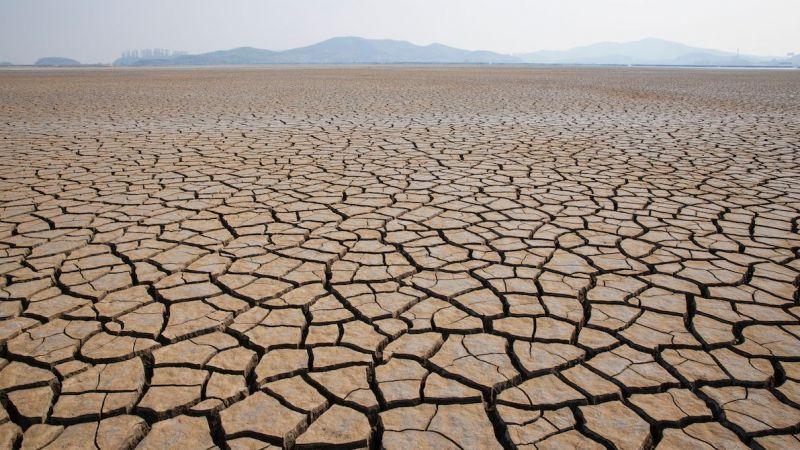 Tarım ve Orman Bakanlığı'ndan iklim değişikliğine karşı 9 strateji, 51 eylem