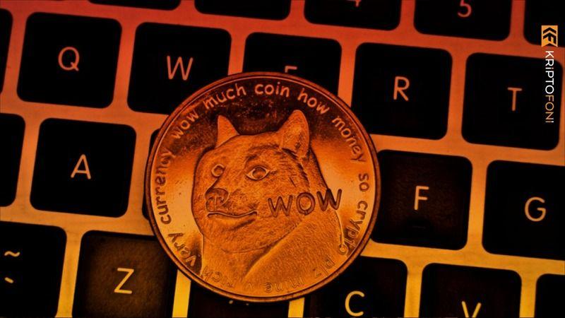 Dogecoin vurgunu 1 milyar TL ile ortadan kayboldular çok madur var!