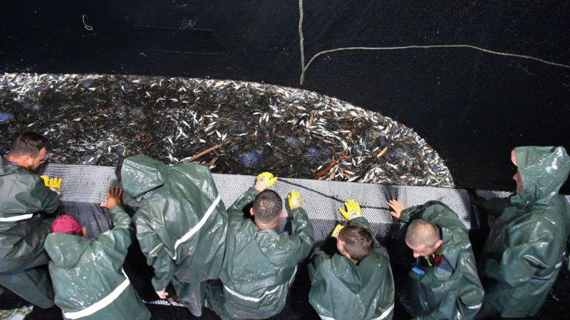"""Av yasağının kalkmasıyla balıkçılar """"Vira Bismillah"""" diyerek denize açıldı"""