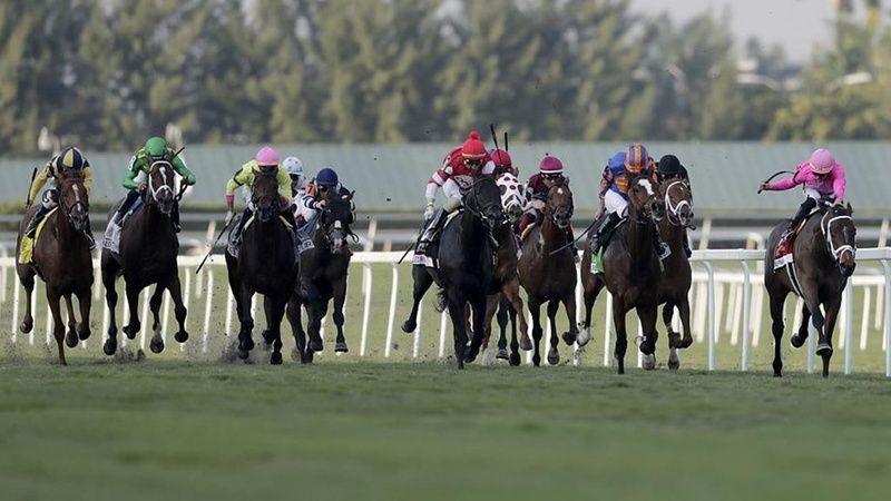 TJK 2 Eylül 2021 Perşembe Ankara İzmir at yarışı tahminleri! 2 Eylül altılı tahminleri