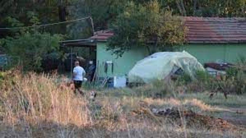 Edirne'de karantinaya alınan köyler var! Nedeni 'mavi dil' hastalığı