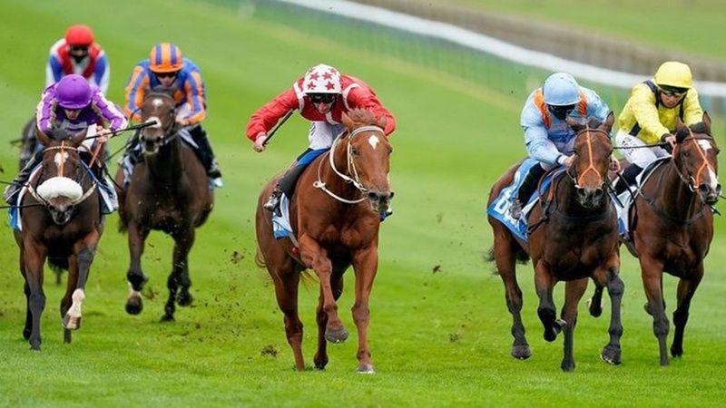 4 Ekim 2021 Bursa Kocaeli at yarışı tahminleri! 4 Ekim banko altılı tahminleri! At yarışı programı