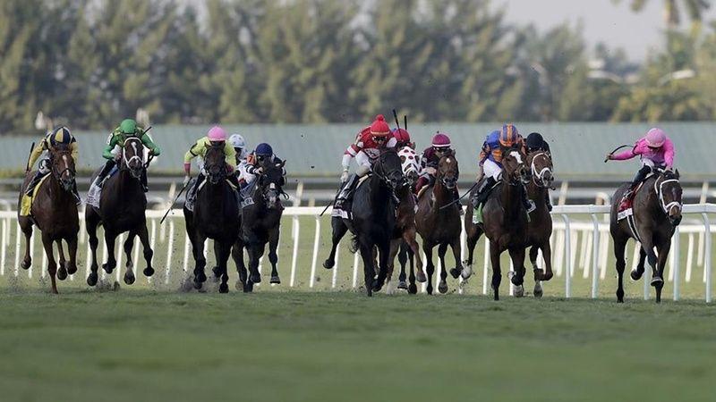 10 Ekim 2021 at yarışı sonuçları! 10 Ekim 2021 Pazar İstanbul altılı sonuçları