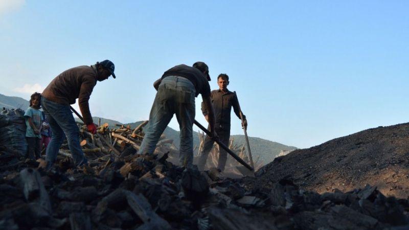 Gaziantep'te odun kömürü işçilerinin zorlu mesaisi sürüyor