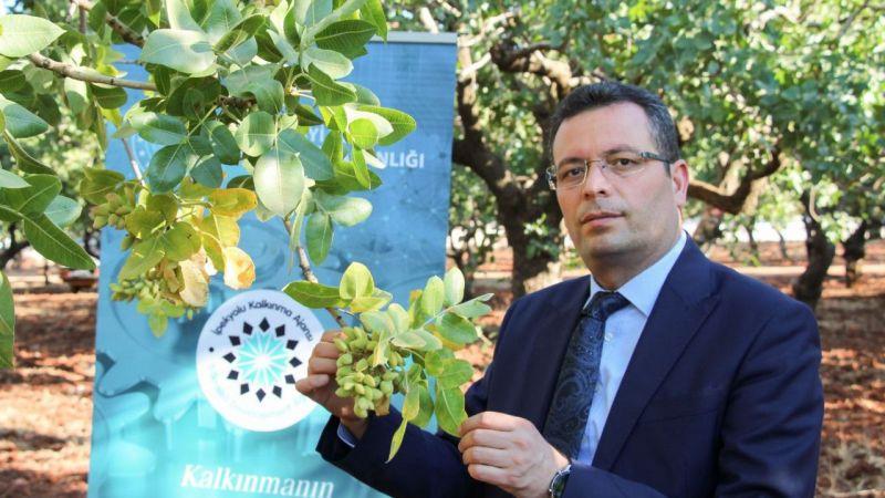 Bakan Varank: Antep fıstığı elektronik ortamda alınıp satılacak