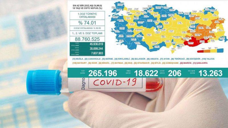 Türkiye'de son 24 saatte 18 bin 622 vaka tespit edildi, 206 kişi vefat etti