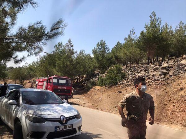 Kilis'te çıkan orman yangını büyümeden söndürüldü