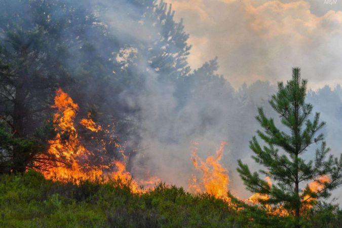 Kaz Dağları'ndaki yangın sürüyor