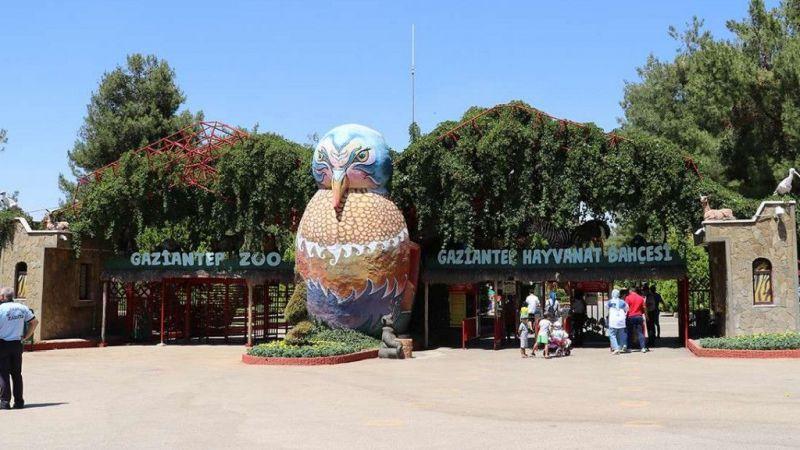 Gaziantep Hayvanat Bahçesi tekrar ziyarete açılıyor