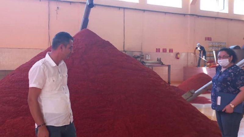 İslahiye ilçe Tarım ve Orman Müdürlüğünden biber ve salça üreten fabrikalara denetim