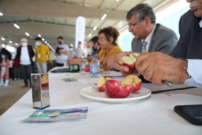 Tarım fuarında elma ve domates güzellik yarışması yapıldı