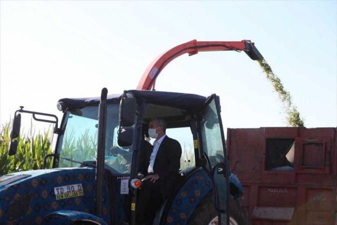 Şahinbey Belediye Başkanı Tahmazoğlu, çiftçilerle mısır topladı