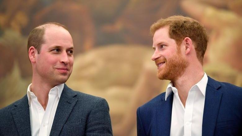 Prens William, Prens Harry ile görüşmek için gizlice ABD'ye geldi