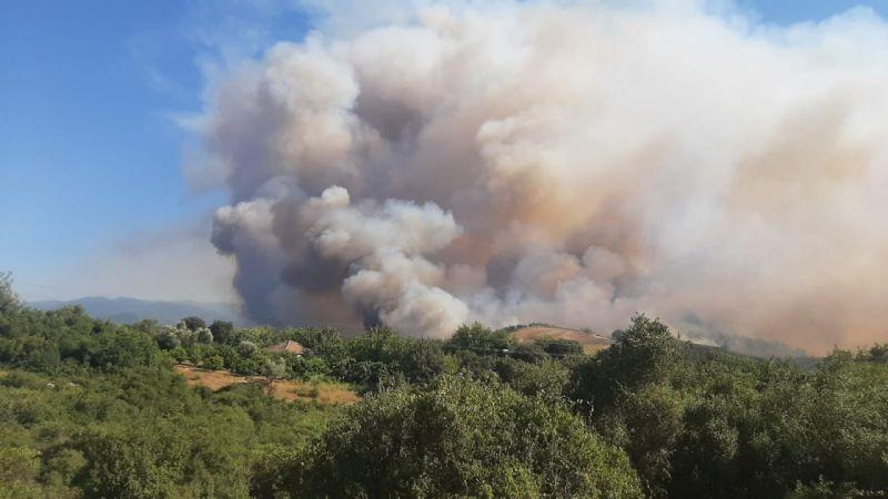 Osmaniye Valisi Erdinç Yılmaz'dan orman yangını açıklaması