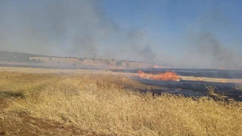 Arızalanan biçerdöverden çıkan yangında 140 dekar buğday ekili alan kül oldu