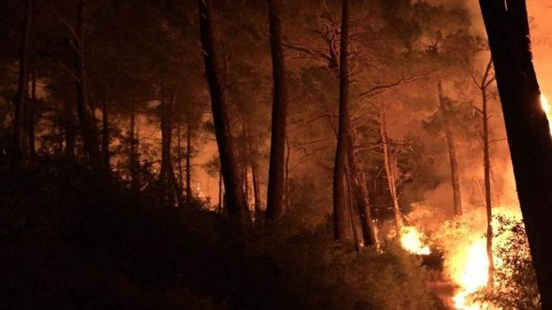 Seydikemer'de üç ayrı noktada orman yangını çıktı