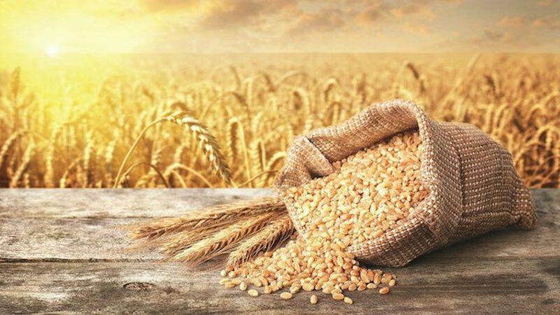 İşte buğdayın 2021 fiyatı…