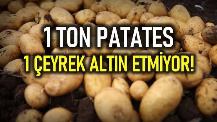 """""""Patates ekimi bir kumardır"""""""
