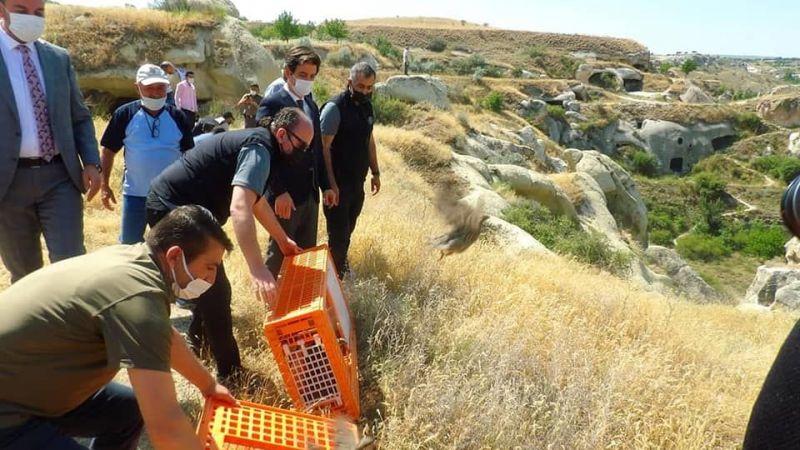 Nevşehir'de tehlikeli keneler yok edilecek!