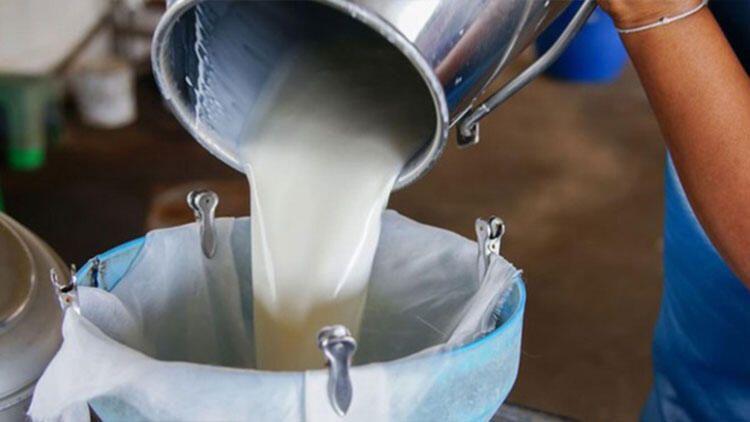 TÜİK süt ürünlerini araştırdı