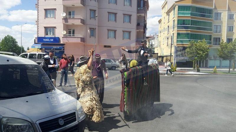 Nevşehir'de deve oyunu oynandı