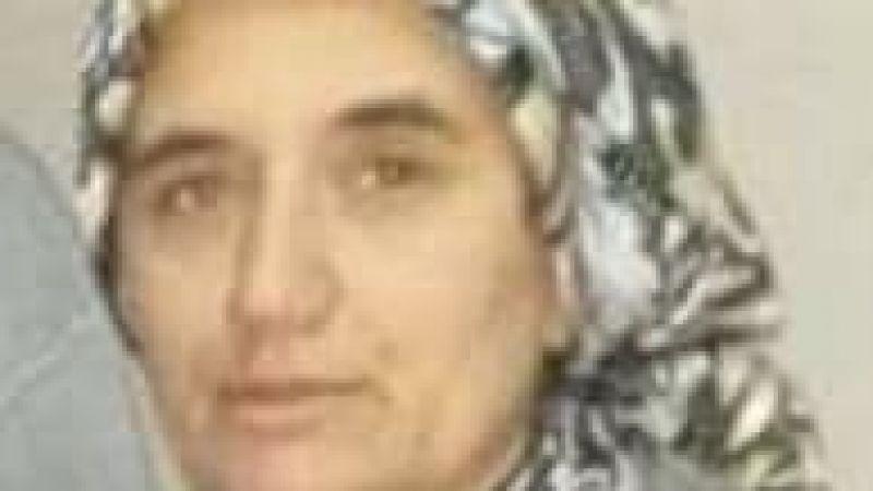 Mantar ailesinin acı günü