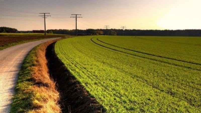 İşte Nevşehir'de tarım alanları toplamı…