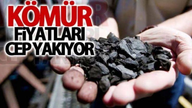 Kömür fiyatları nereye gidiyor?