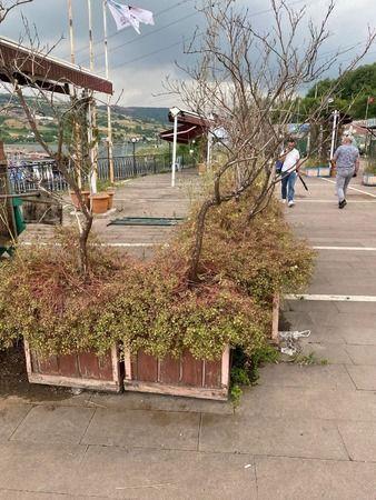 Tutuş'tan İzmit Belediyesine: Hiç mi içiniz sızlamıyor